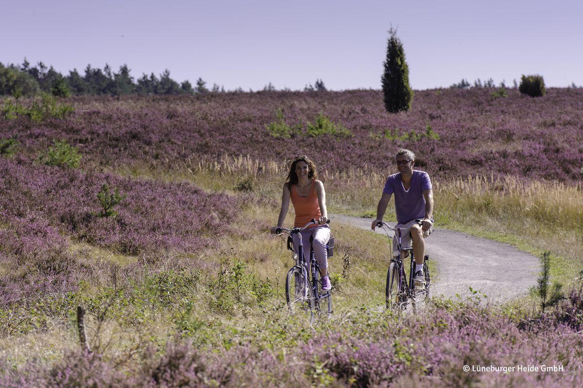 Mit dem Fahrrad durch die Heide