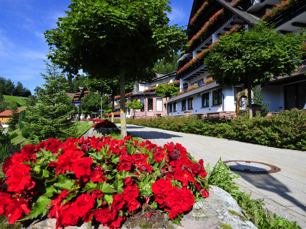 Rose Week 23 06 2019 30 06 2019 Relais Chateaux Hotel Dollenberg