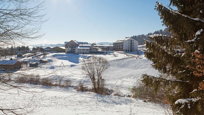 Urlaubsangebot: Wald-Winter-Wochen - Schreinerhof in Schönberg