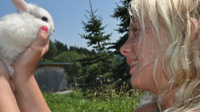 Ostern in Kärnten mit Pflegeosterhasen