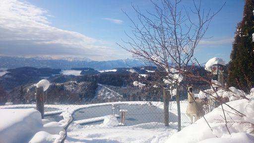 Die glitzernde Schneedecke und die weißen Gipfel rund um den Petschnighof laden zu ausgedehnten Touren ein.