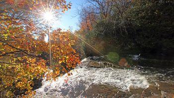 Herbstzauber in Gengenbach