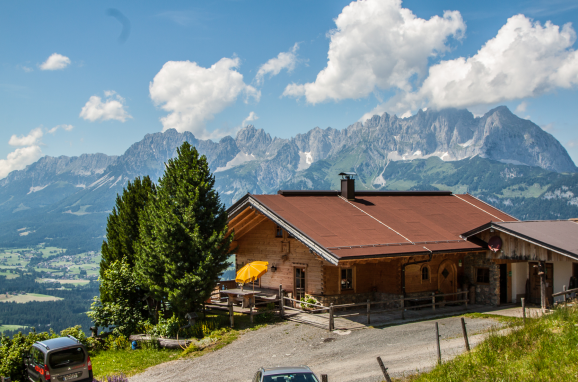 Sommer, Steinbergalm, Kitzbühel - Oberndorf in Tirol, Tirol, Tirol, Österreich