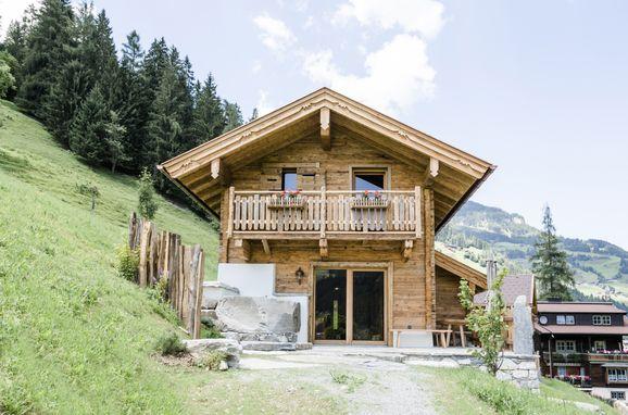 Sommer, Chalet Almrausch in Großarl, Salzburg, Salzburg, Österreich