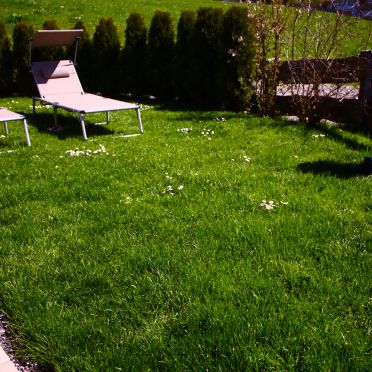 Garten, Chalet Mödlinghof in Hopfgarten Bez. Kitzbühel, Tirol, Tirol, Österreich