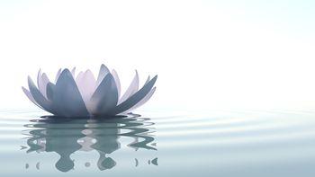 Den eigenen Akku aufladen-Energie und Lebenskraft aufladen