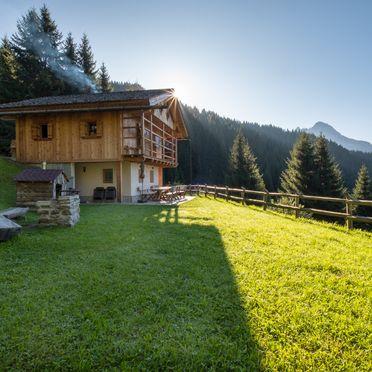 Sommer, Costetoi Hütte in San Pietro di Cadore, Südtirol, Trentino-Südtirol, Italien
