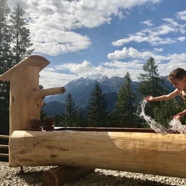 Summer, Prenner Alm, Haus im Ennstal, Steiermark, Styria , Austria