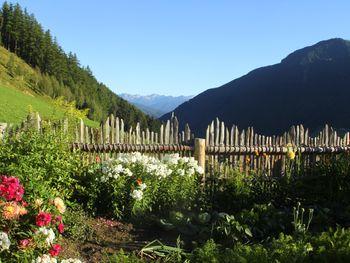 Schauinstal Hütte 1 - Alto Adige - Italy