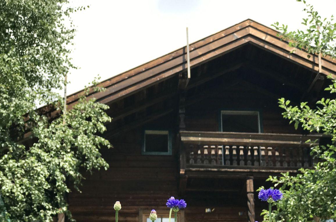 Alpine Chalet Wildkogel, Summer