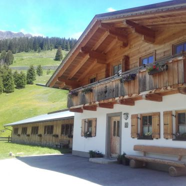 summer, Riepleralm, Matrei in Osttirol, Tirol, Tyrol, Austria