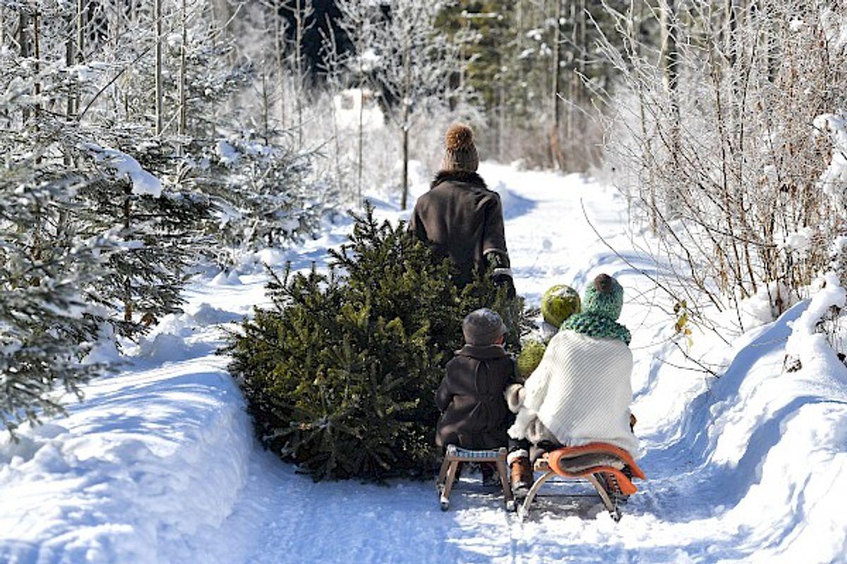 Frohe Weihnachten im POST Family Resort