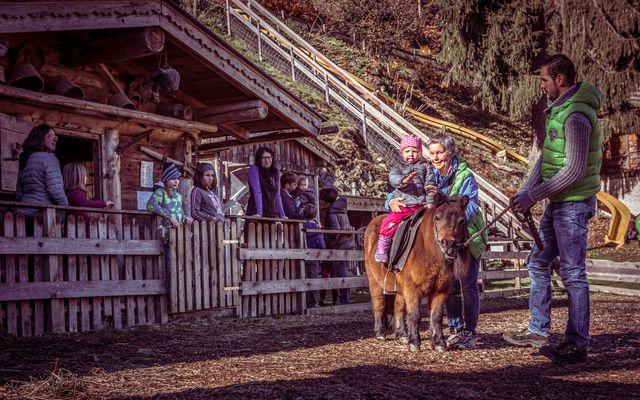 Pony Reiten am Streichelzoo