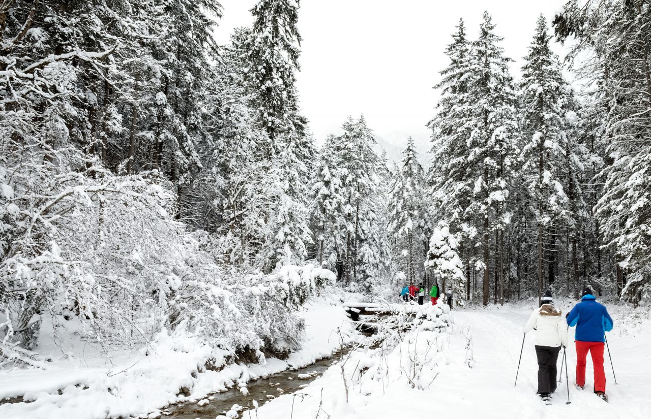 Schneeschuhwanderung Gradenbach