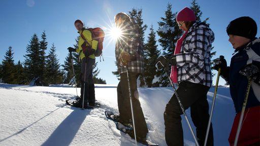 Perfekt präparierte Pisten erwarten Skifahrer und Langläufer vor einer tollen landschaftlichen Kulisse.