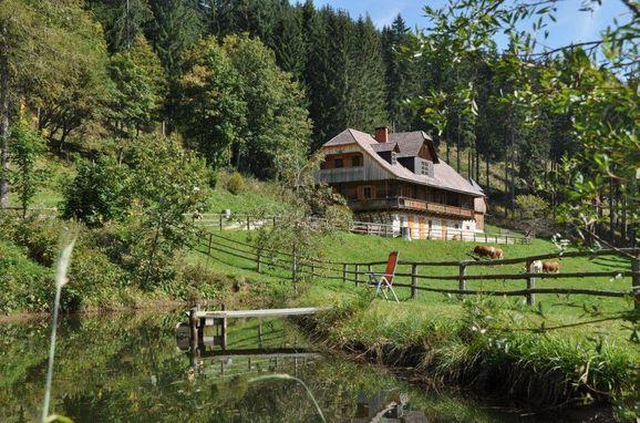 Sommer, Almhütte Kuhgraben, Bad St. Leonhard, Kärnten, Kärnten, Österreich