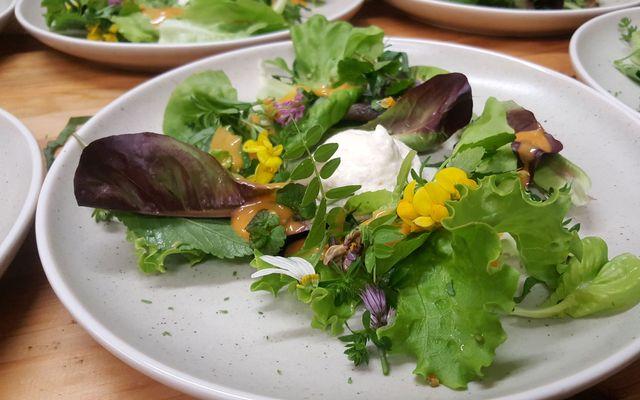 BIO HOTEL Steineggerhof: Salat