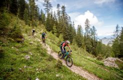 Bio- und Bikehotel Steineggerhof, Steinegg, Südtirol, Trentino-Alto Adige, Italia (3/39)