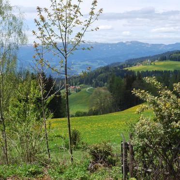 Aussicht, Langhans Hütte 2 in St. Gertraud - Lavanttal, Kärnten, Kärnten, Österreich