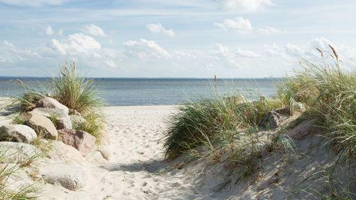 Schöne Dünen und eine herrliche Strandpromenade können Sie im Familotel Strandkind genießen.