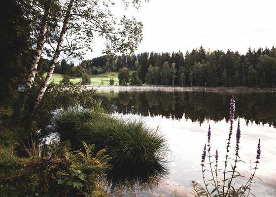 Urlaub - Bruggerhof – Camping, Restaurant, Hotel