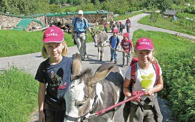 Spaziergänge mit Eseln für Kinder in Begleitung Erwachsener