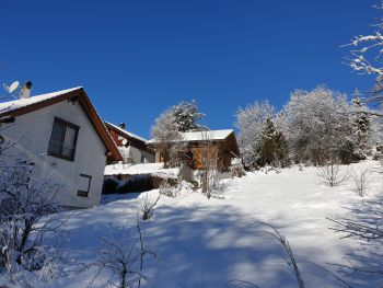 Ferienhaus 146 - Carinthia  - Austria