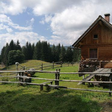 Summer, Puklhube, Bad St. Leonhard, Carinthia , Austria