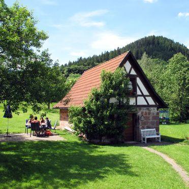 Außen Sommer 1 - Hauptbild, Ferienhütte Backhäusle, Alpirsbach, Schwarzwald, Baden-Württemberg, Deutschland