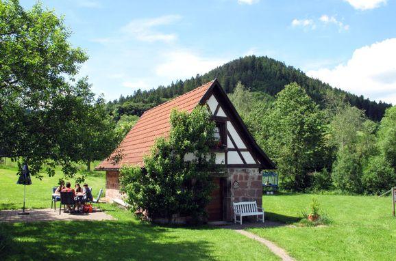 Innen Sommer 1 - Hauptbild, Ferienhütte Backhäusle, Alpirsbach, Schwarzwald, Baden-Württemberg, Deutschland