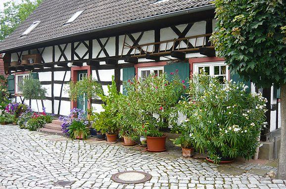 Außen Sommer 1 - Hauptbild, Haus Schwärzel im Schwarzwald, Ichenheim, Schwarzwald, Baden-Württemberg, Deutschland
