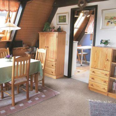Innen Sommer 3, Ferienhütte Tennenbronn im Schwarzwald, Tennenbronn, Schwarzwald, Baden-Württemberg, Deutschland