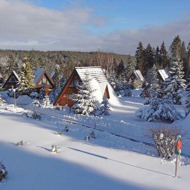 Außen Winter 18, Ferienhütte Tennenbronn im Schwarzwald, Tennenbronn, Schwarzwald, Baden-Württemberg, Deutschland