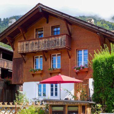 Outside Summer 1 - Main Image, Ferienchalet Hüsli, Brienzwiler, Berner Oberland, Berne, Switzerland