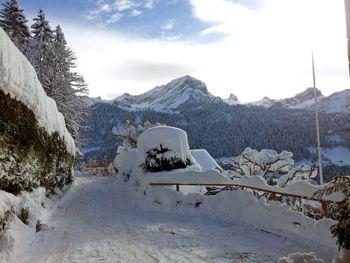 """Chalet """"Zan Fleuron"""" in den Waadtländer Alpen - Waadt - Schweiz"""