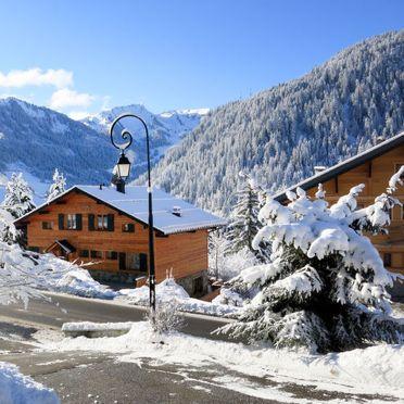 Außen Winter 15, Chalet fer à Cheval, Châtel, Savoyen - Hochsavoyen, Auvergne-Rhône-Alpes, Frankreich