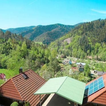 Innen Sommer 3, Schwarzwaldhütte Julia, Hornberg, Schwarzwald, Baden-Württemberg, Deutschland