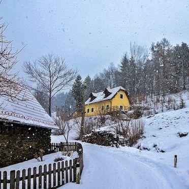 Außen Winter 28, Ferienchalet Feichtinger, Prigglitz, Niederösterreich, Niederösterreich, Österreich