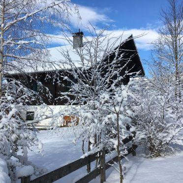 Außen Winter 33, Panoramachalet Bad Aussee, Bad Aussee, Salzkammergut, Steiermark, Österreich