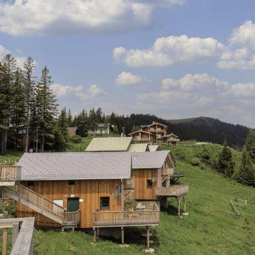 Outside Summer 1 - Main Image, Chalet Klippitzrose, Klippitztörl, Kärnten, Carinthia , Austria