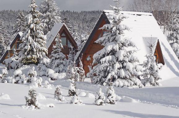 Außen Winter 12 - Hauptbild, Schwarzwald-Chalet Tennenbronn, Tennenbronn, Schwarzwald, Baden-Württemberg, Deutschland