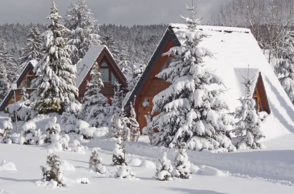 Outside Winter 12 - Main Image, Schwarzwald-Chalet Tennenbronn, Tennenbronn, Schwarzwald, Baden-Württemberg, Germany