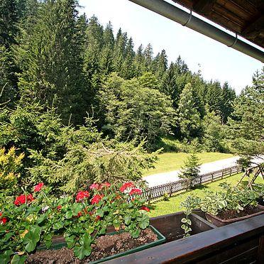 Außen Sommer 2, Berghütte Sternisa, Hirschegg - Pack, Steiermark, Steiermark, Österreich