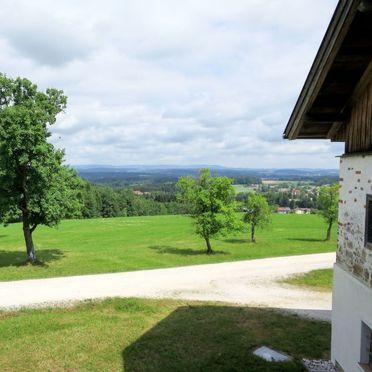 Außen Sommer 2, Chalet Lehner im Wald, Rutzenmoos, Oberösterreich, Oberösterreich, Österreich